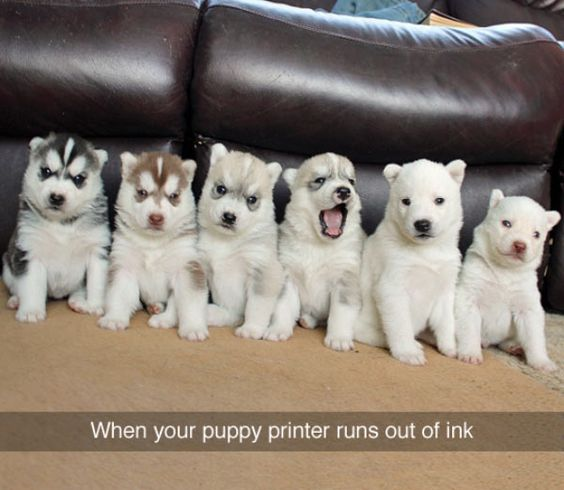 how to get ink out of a printer