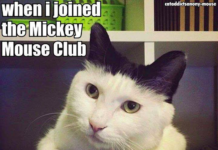 mickey-mouse-club-fail