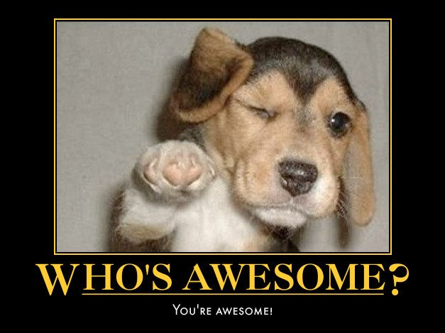 whos awesome meme